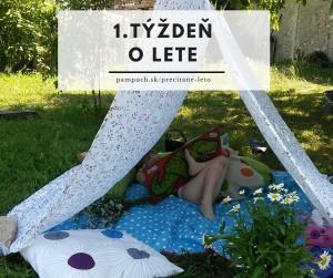 Prečítané leto (4)
