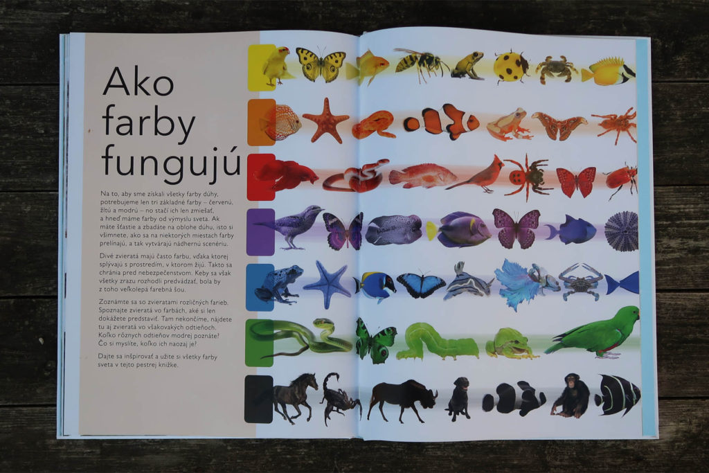 farebny svet zvierat